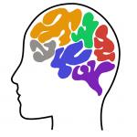 Developmental Social Neuroscience Lab